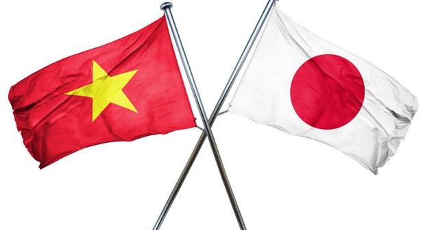 建立健全的越南——日本合作框架内的越南工业化战略指导委员会 hinh anh 1