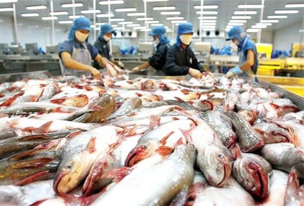 2019年越南力争实现水产品出口额达105亿美元的目标 hinh anh 1