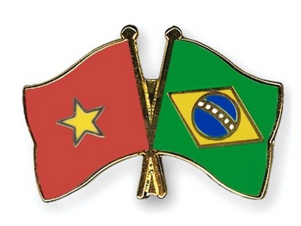 巴西同越南一道努力推动双边关系取得新的进展 hinh anh 1