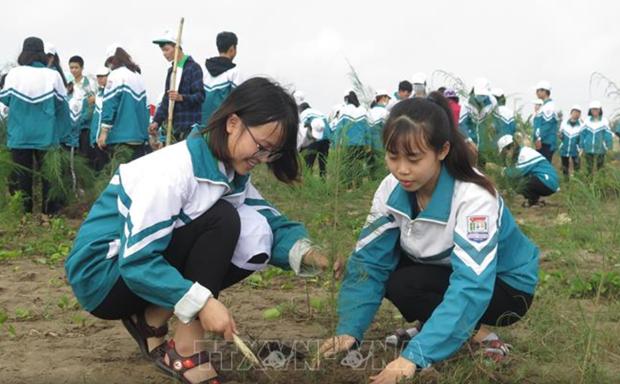 南定省在该省沿海地区种植3000棵树共同建设美丽家园 hinh anh 2