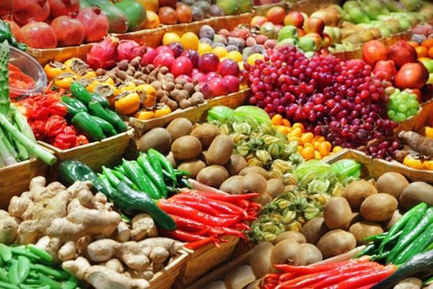 越南目标2019年果蔬出口额达42亿美元 hinh anh 1