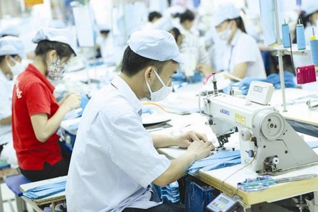努力将接受职业技能培训的劳动力比例提升为60-62% hinh anh 1