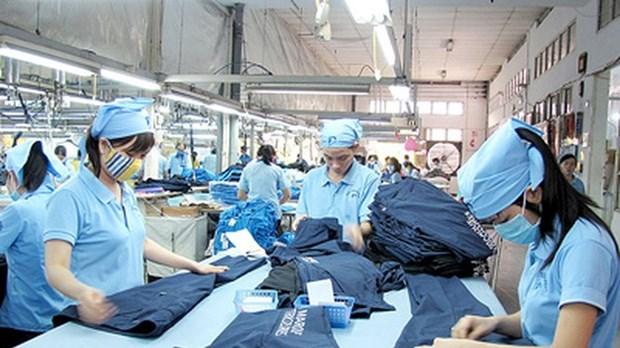 2019年越南纺织服装出口额力争达到400亿美元 hinh anh 1