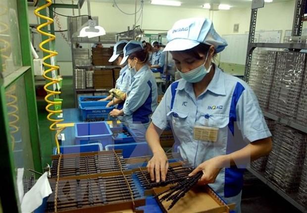 春节期间全国进出口总额达10多亿美元 hinh anh 1