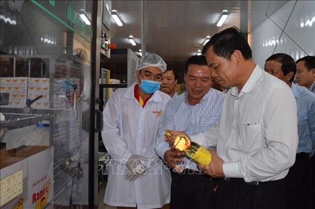 农业与农村发展部部长阮春强:越南是查鱼产业的潜在市场 hinh anh 2