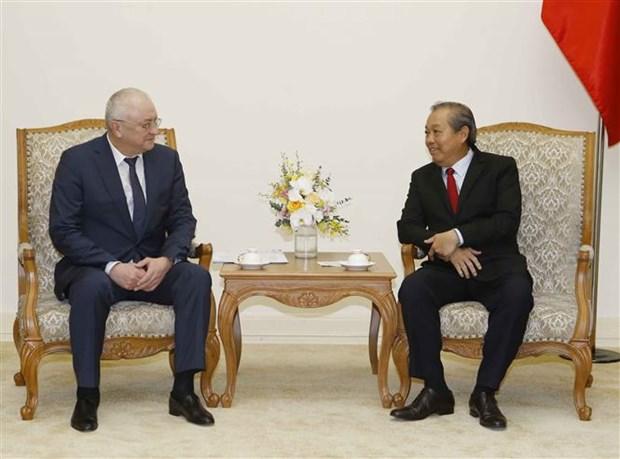 越南政府常务副总理张和平会见俄罗斯总统反腐败局副局长 hinh anh 1