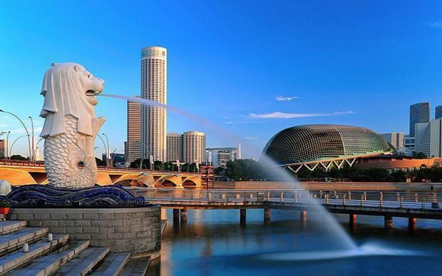 2018年新加坡固定资产投资超过80亿美元 hinh anh 1
