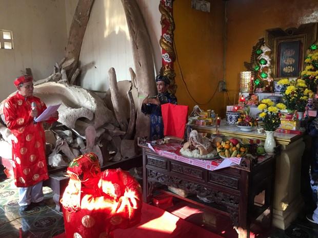 富有沿海渔民文化特色的求鱼节 hinh anh 2