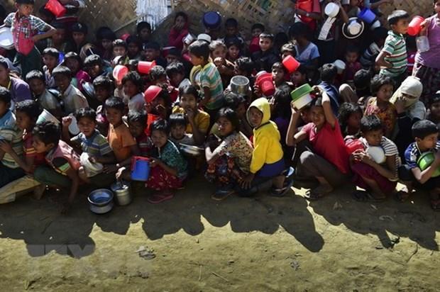 联合国帮助缅甸加强粮食安全和自然资源管理 hinh anh 1