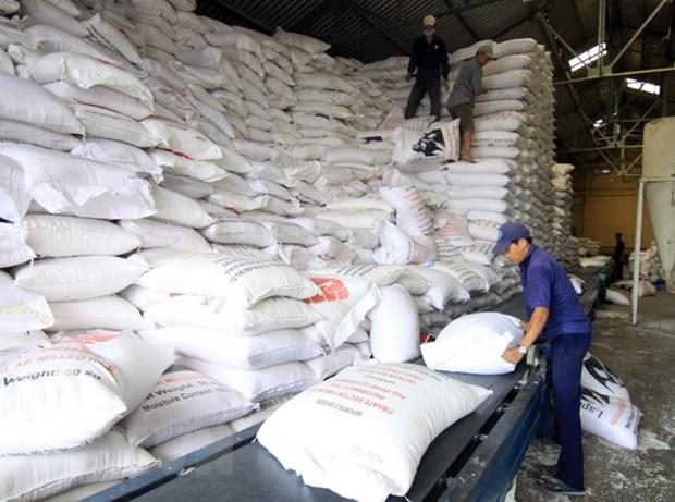 努力疏解稻米销售中面临的困难 hinh anh 1