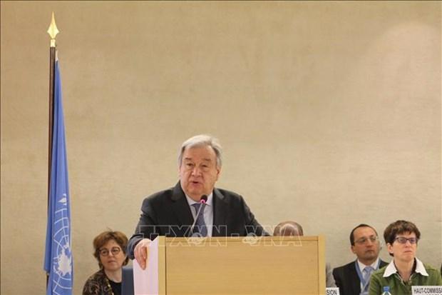 联合国人权理事会第40次会议开幕 越南代表与会 hinh anh 1