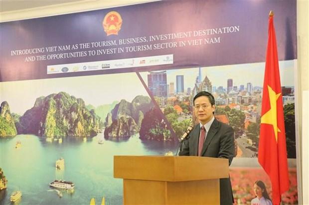 越南加强与东帝汶的合作关系 hinh anh 1
