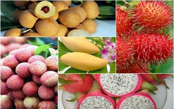 越南农产品力争征服高端市场 hinh anh 1