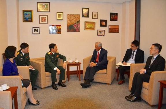 越南与新加坡加强防务合作 hinh anh 2