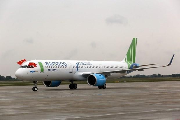 2019年越竹航空公司航线将覆盖全国任一航点 hinh anh 2