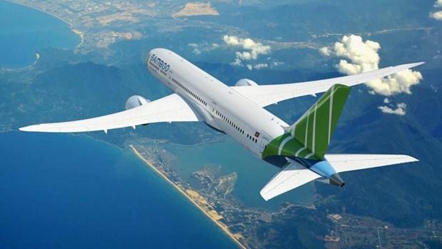 2019年越竹航空公司航线将覆盖全国任一航点 hinh anh 1