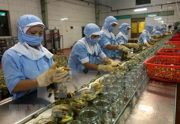 1-2月越南农林水产品出口额有所略降 hinh anh 1