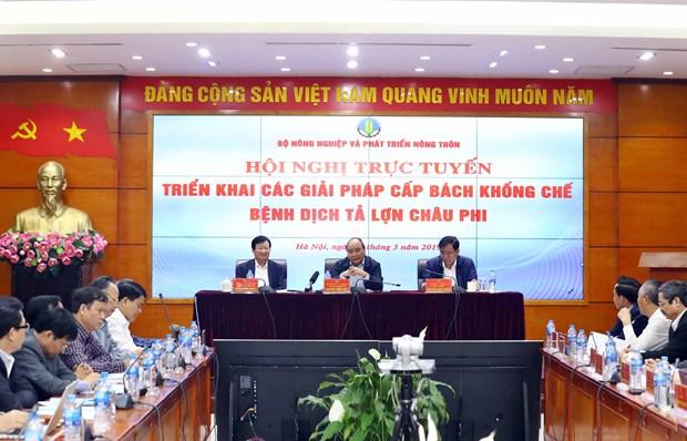 政府总理:各地方领导须对防控非洲猪瘟工作情况承担最终责任 hinh anh 2