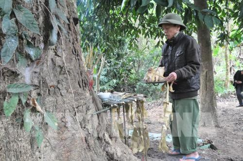 安沛省文安县纳侯乡蒙族的森林祭祀仪式 hinh anh 1