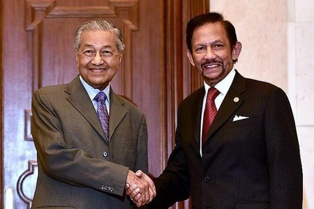 马来西亚与文莱加强双边合作 hinh anh 1
