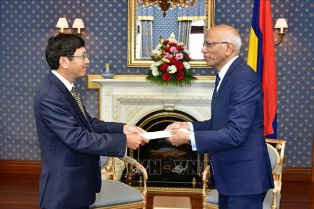 越南和毛里求斯致力于促进多领域的合作关系 hinh anh 1