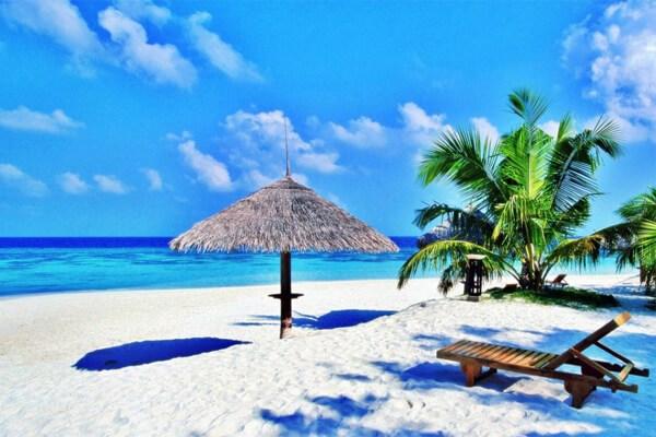 把平顺省建设成为友好和安全的旅游目的地 hinh anh 1