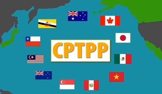越南《全面与进步跨太平洋伙伴关系协定网站》正式上线 hinh anh 1