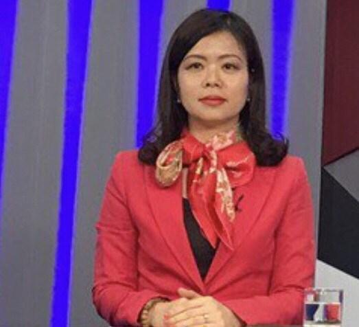 越南争取亚欧会议的合作机会有效提升国际地位 hinh anh 1