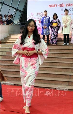 日本文化节在岘港市举行 hinh anh 2