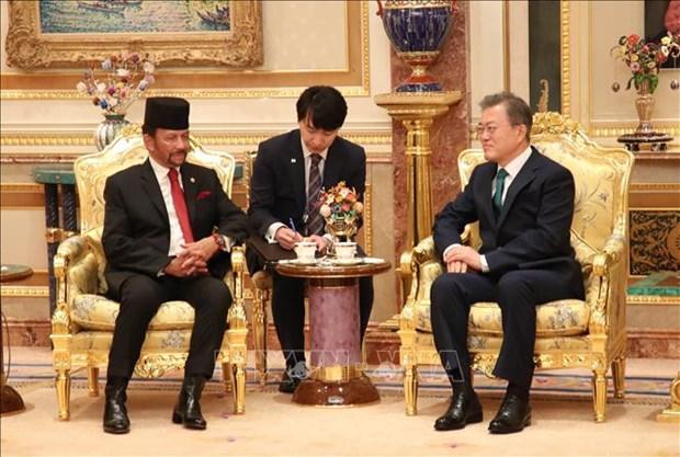 韩国与文莱加强双边合作 hinh anh 1