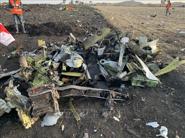 埃塞俄比亚客机坠落事故:印度尼西亚愿意提供协助 hinh anh 1