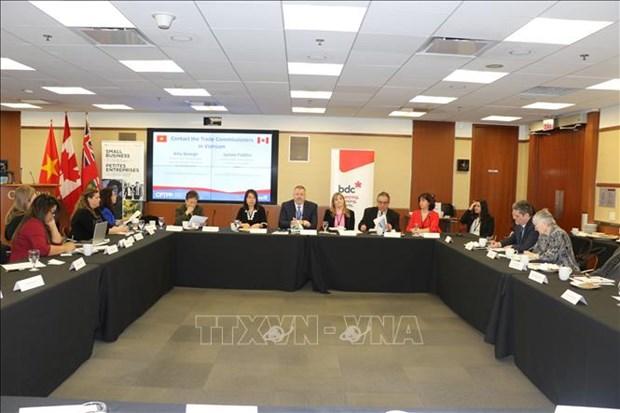 加拿大愿帮助该国企业促进与越南的贸易交流 hinh anh 1