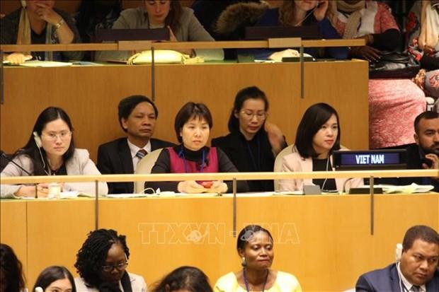越南出席联合国关于性别平等和妇女全力最大会议 hinh anh 2