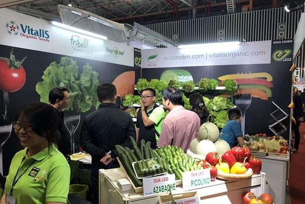 近200家企业参加2019越南国际果蔬及花卉园艺展 hinh anh 1