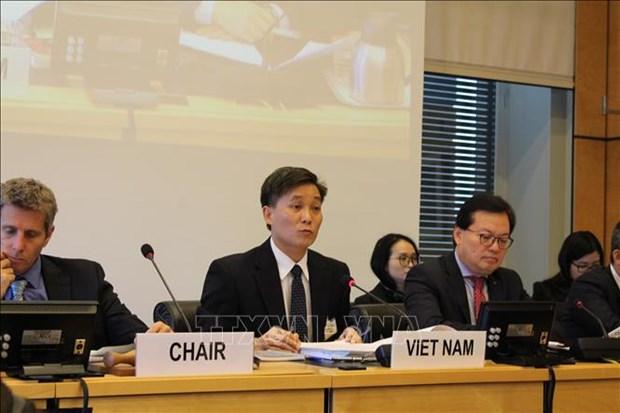 越南分享保护和促进公民权利和政治权利中的可喜成就 hinh anh 2