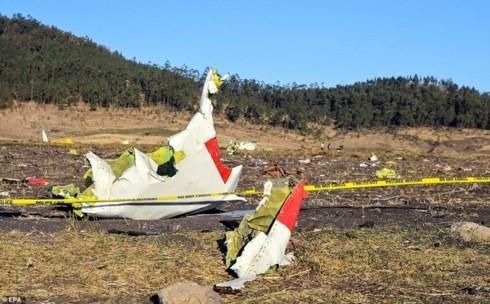 阮富仲就埃塞俄比亚坠机事故向该国总统致慰问电 hinh anh 1