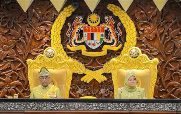 马来西亚国王呼呼民族团结 hinh anh 1