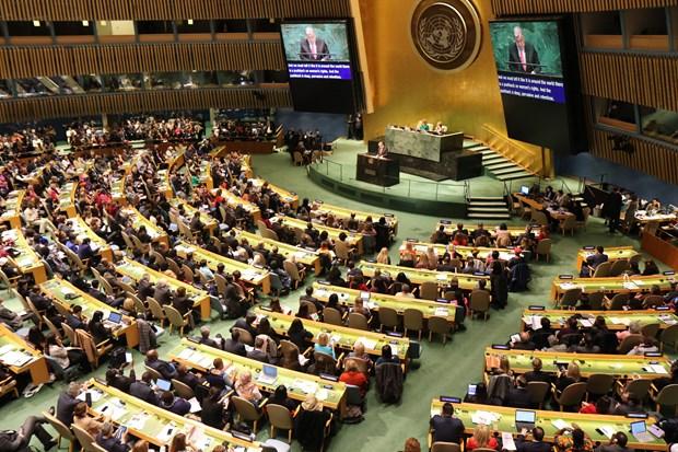联合国第63届妇地会年会:越南在性别平等方面取得长足进展 hinh anh 1