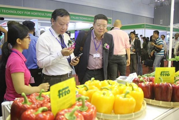 2019越南国际果蔬及花卉园艺展览会开幕 hinh anh 3
