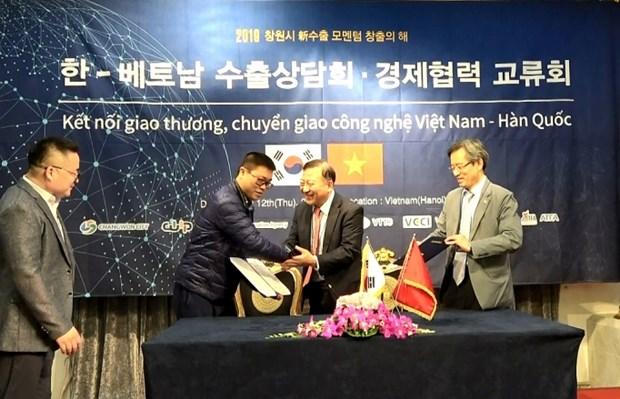 越韩企业进行贸易对接及技术转让 hinh anh 1