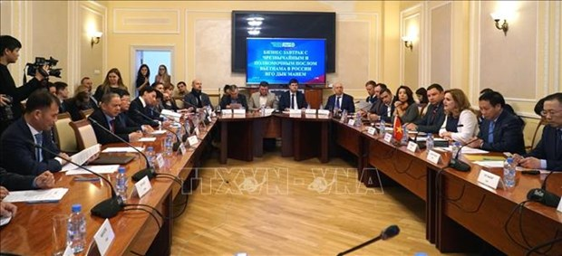 越南与俄罗斯加强中小型企业之间的合作 hinh anh 1