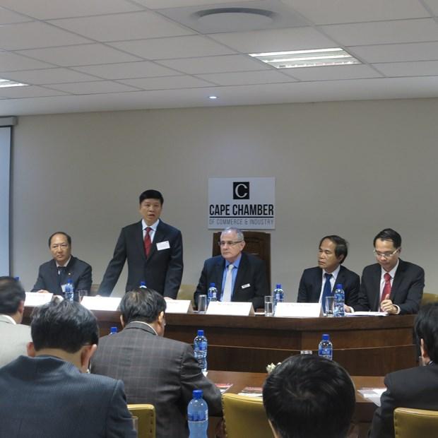 越南与南非为两国企业推进投资合作创造便利合作 hinh anh 1