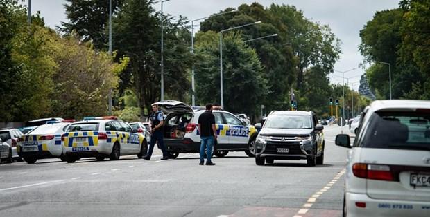 越南强烈谴责新西兰各恐怖袭击 枪击案遇难者中未发现有越南公民 hinh anh 1