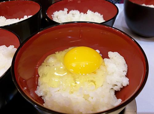 首次向市场供应新鲜即食鸡蛋 hinh anh 1