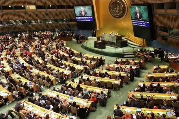 越南参加联合国会议为提高妇女在工业领域中的地位建言献策 hinh anh 1