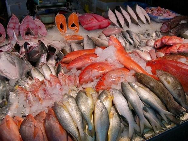 越南水产品出口位居世界第四 hinh anh 1