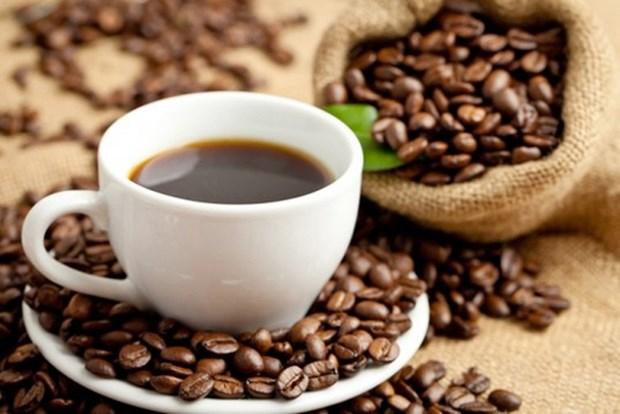 越南咖啡全球所占市场份额有待提高 hinh anh 1
