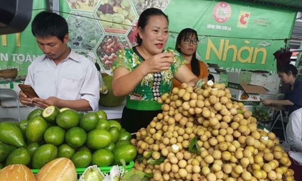 山罗省力争实现2019年农产品出口额达1.5亿美元 hinh anh 1
