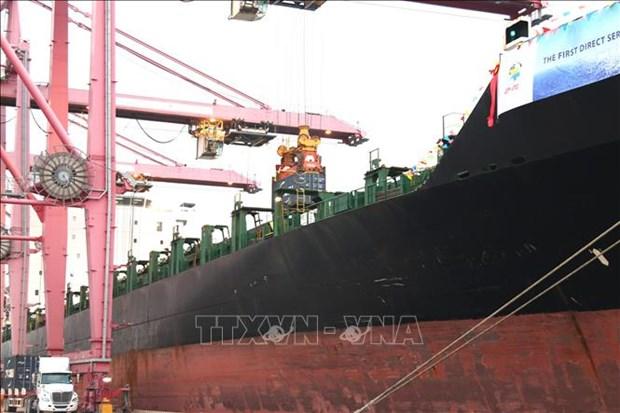 4万吨集装箱船抵达胡志明市港口 hinh anh 2