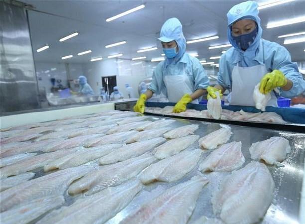 2019年越南努力保持查鱼出口增长态势 hinh anh 1